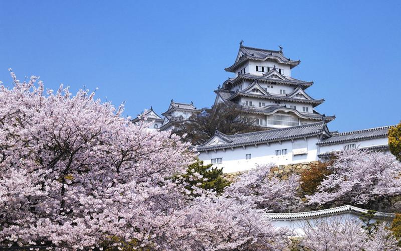Cẩm nang du lịch Nhật Bản từ A đến Z, chi tiết nhất 2