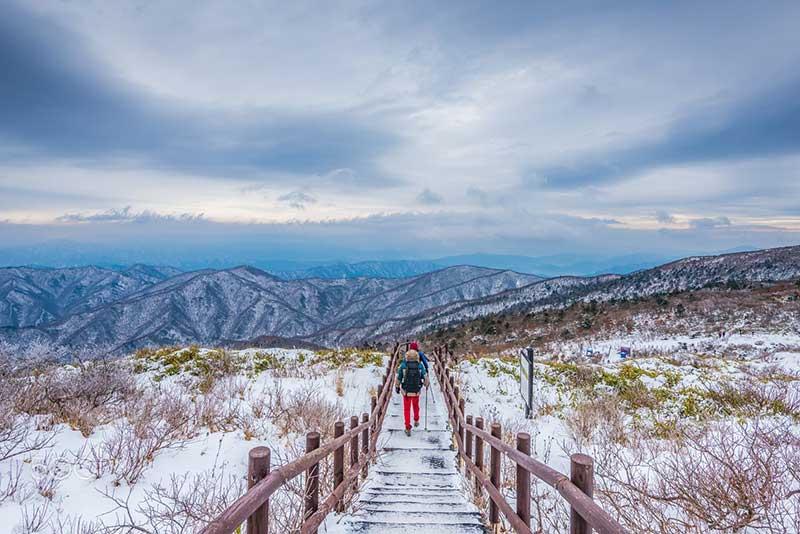du lịch hàn quốc mùa nào đẹp 1