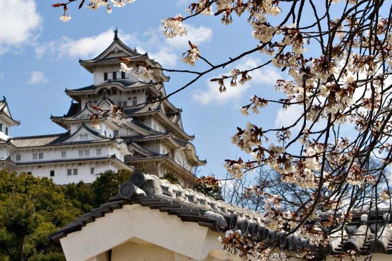 Du lịch Nhật Bản nên đi đâu 2