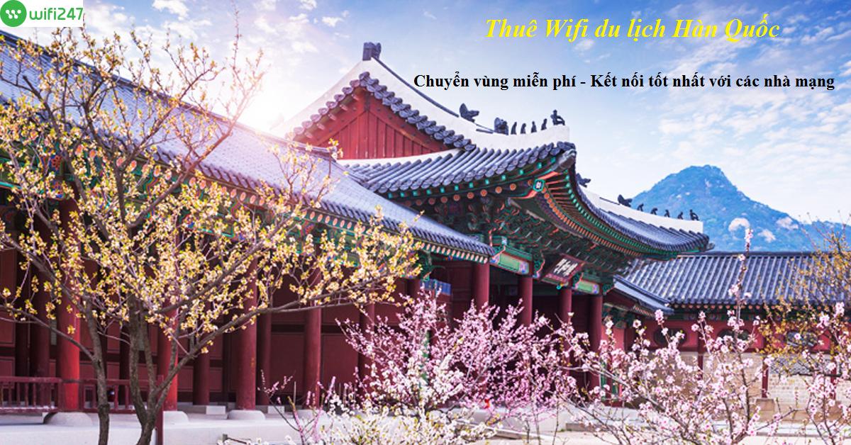 thuê wifi đi Hàn Quốc